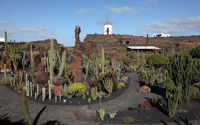 Le jardin de cactus lanzarote for Jardin de cactus lanzarote