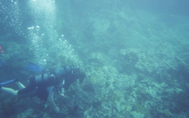 plage de malendure plongée