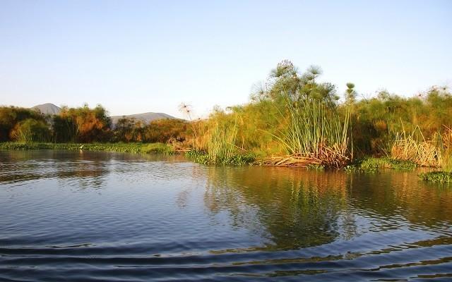 lac Naivasha