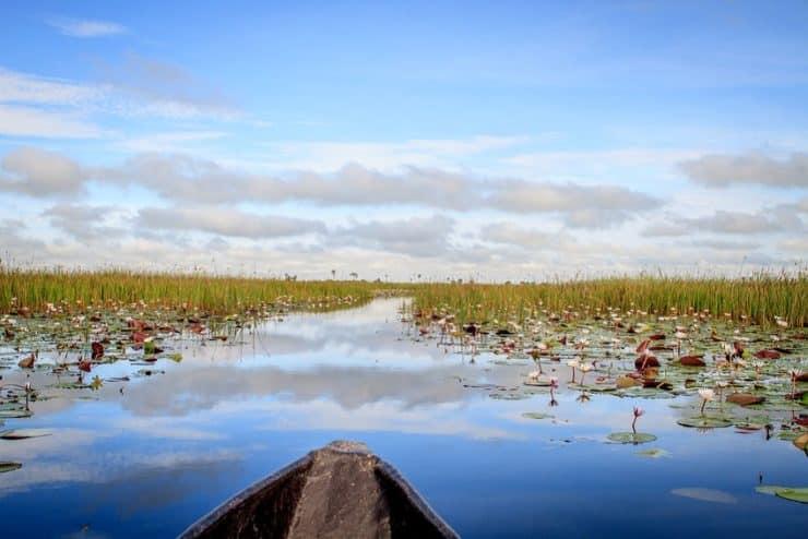 delta de l'okavango bateau mokoro