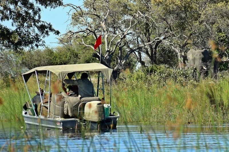 visiter le delta de l'okavango