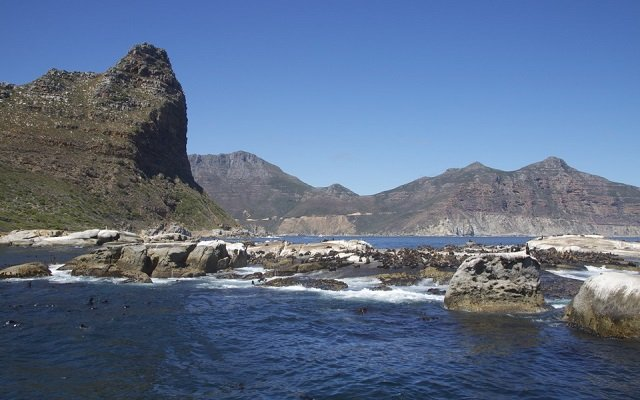 duiker island