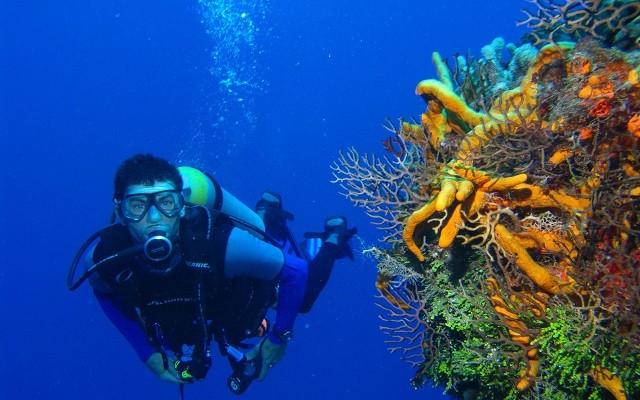 Faire de la plongee au nicaragua