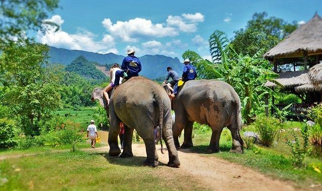 village des éléphants au laos