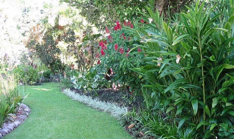 golfito jardin botanique