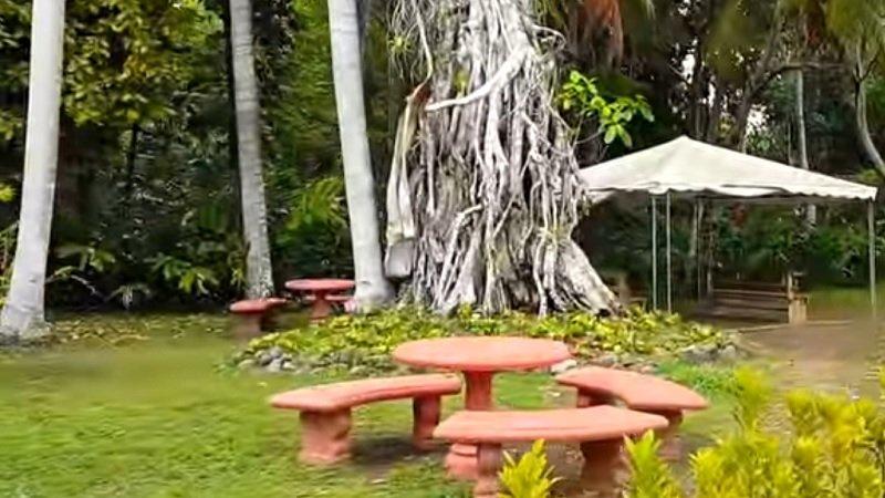 aire de pique nique chutes de dunn jamaique