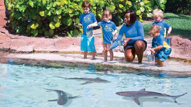 atlantis paradise island enfants