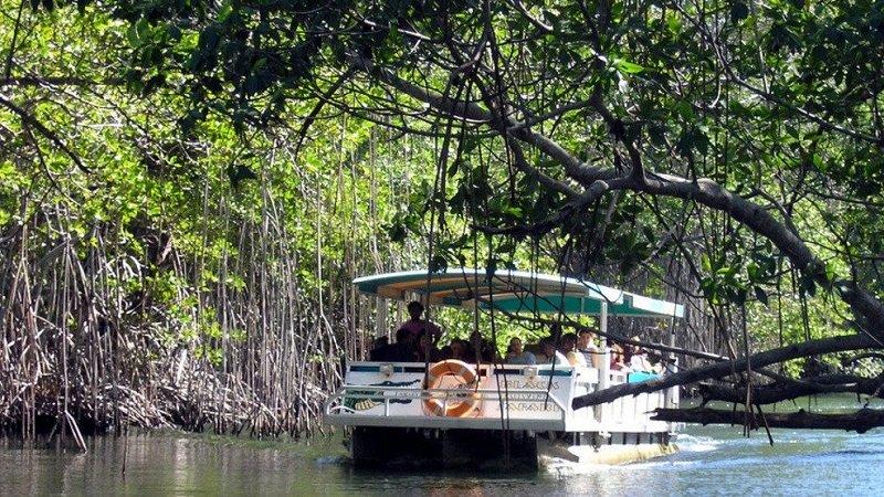 black river bateau