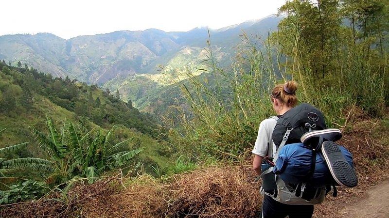 randonnée montagnes bleues jamaique