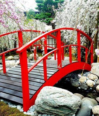 japon selon les saisons