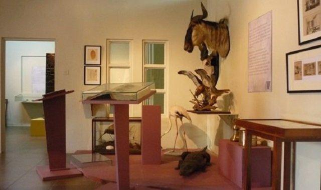 musée national jamaique