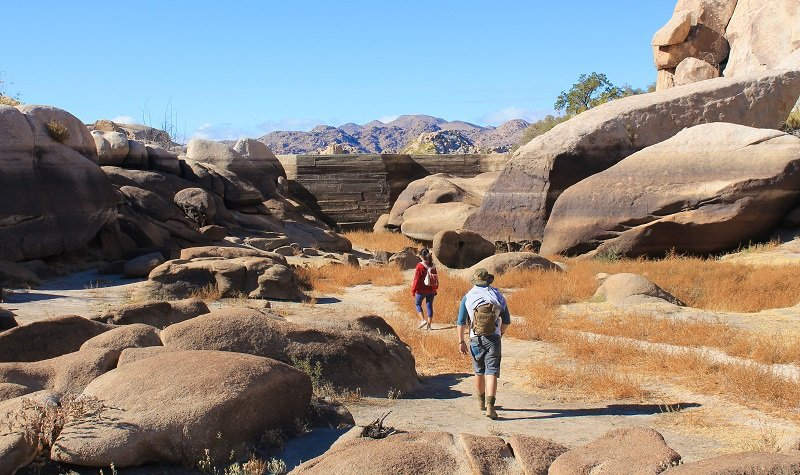 parc national joshua tree