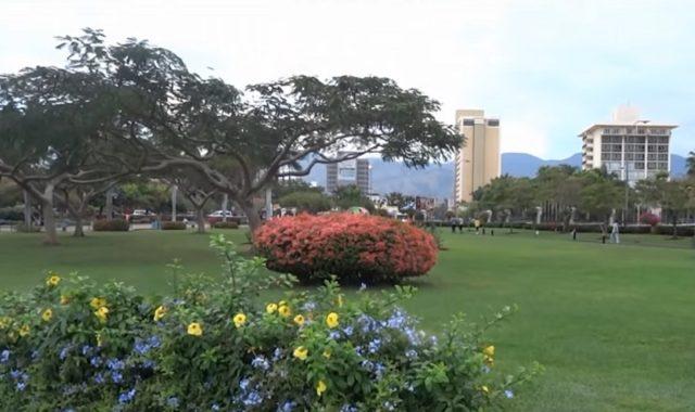 parcs et jardins de Kingston en Jamaïque