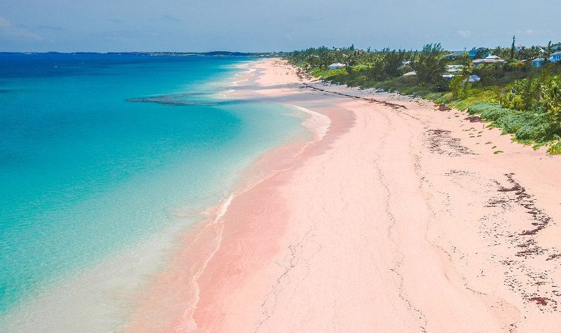 plage de pink sands beach