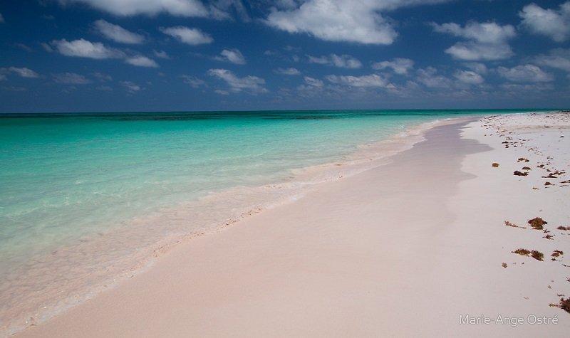 plage ile cat bahamas