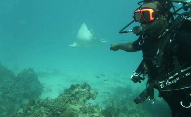 plongée negril jamaique