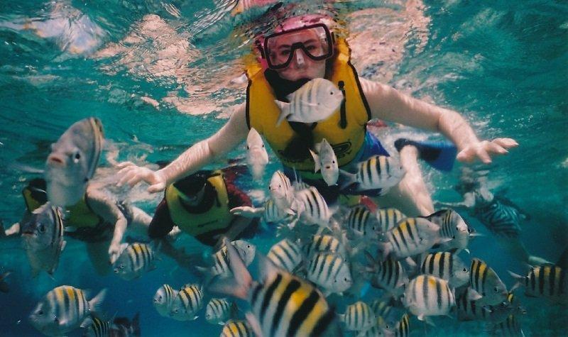 snorkeling jamaique
