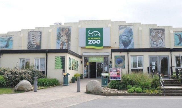 zoo de blackpool