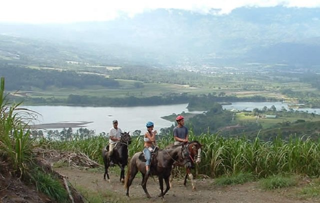 cheval turrialba