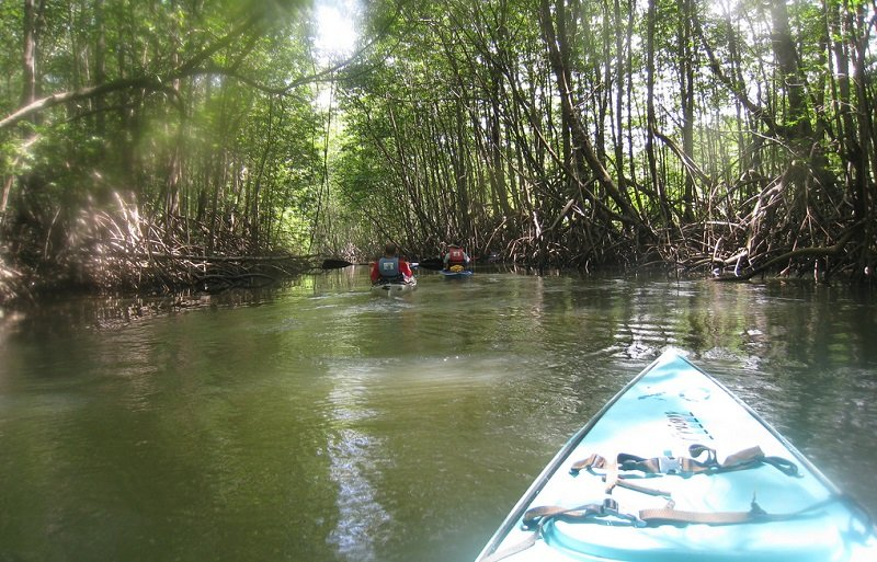 puerto jimenez kayak
