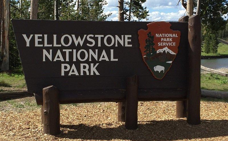 parc national de yellowstone activités