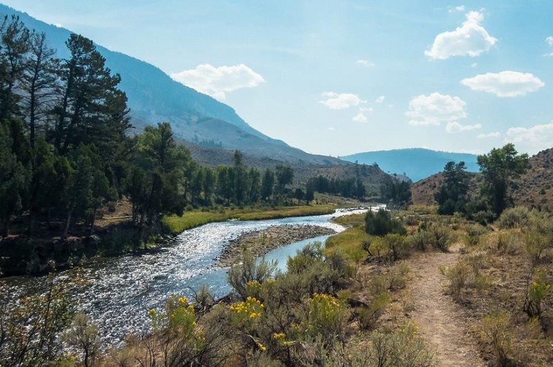 parc national de yellowstone activité