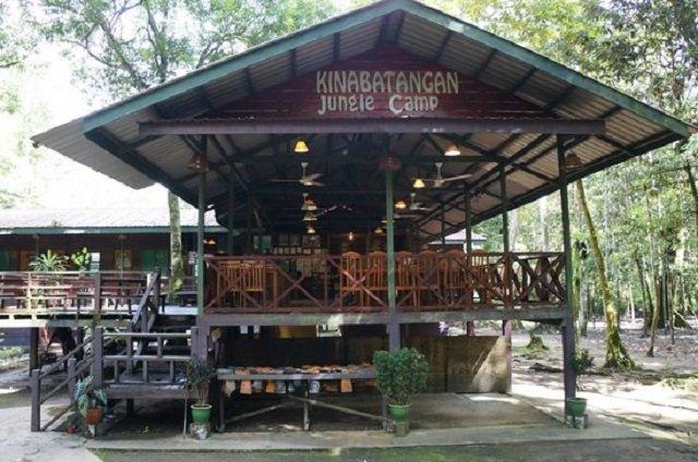 rivière Kinabatangan camp jungle