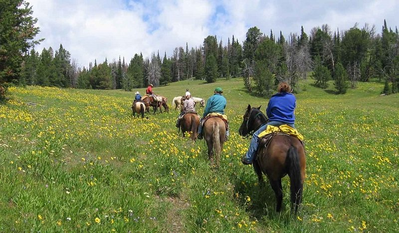 yellowstone à cheval