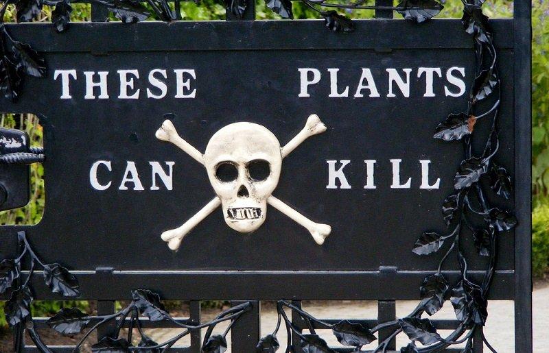jardin des poisons