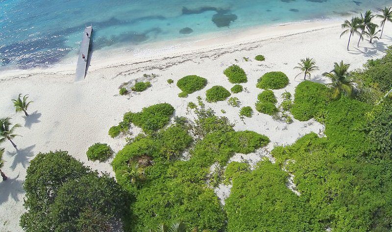 les meilleures plages des îles caïmans