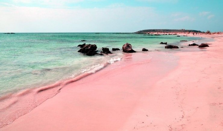 plage rose insolite