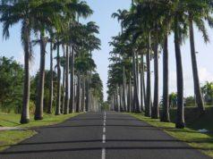 Visiter la Guadeloupe sans voiture