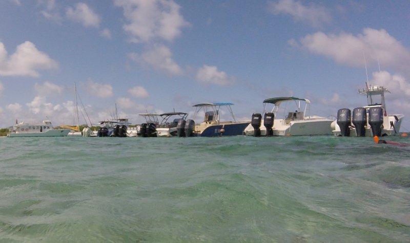 bateaux petite terre