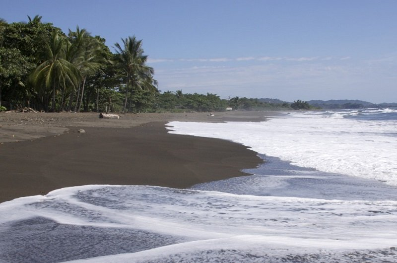 plage tortues costa rica
