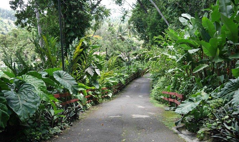 jardins de valombreuse