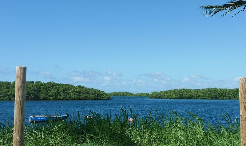 Que faire à Sainte-Rose en Guadeloupe