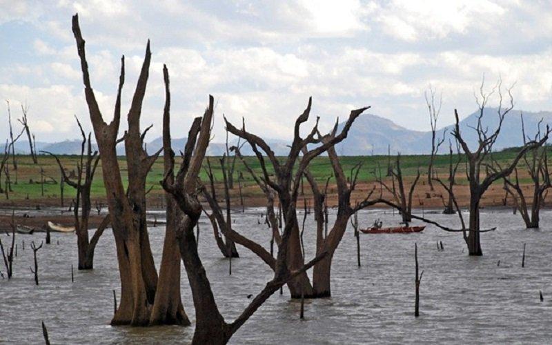 réserve d'Uda Walawe