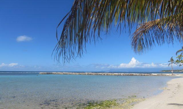 Passer des vacances de r ve en guadeloupe - Villa de reve pineapple jamaique ...