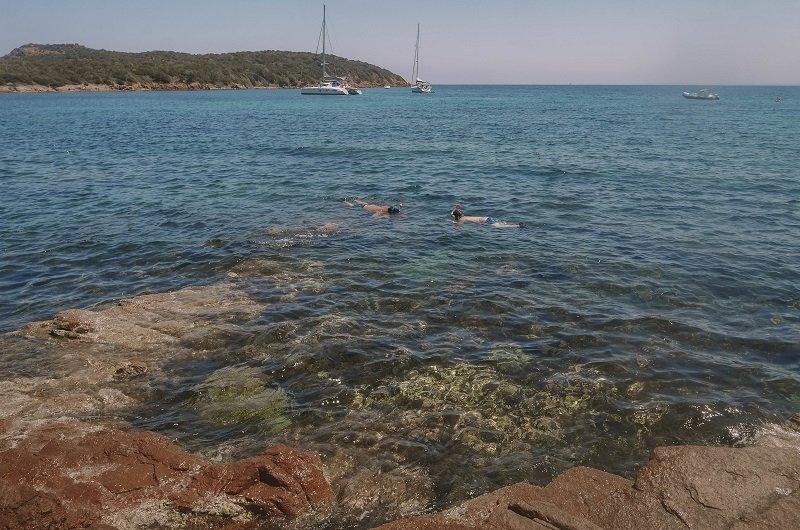 snorkeling rondinara
