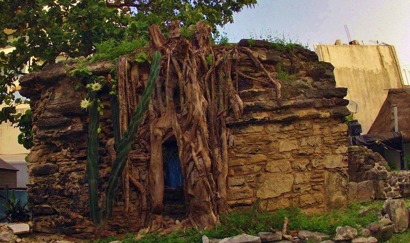 ruine maya playa del carmen