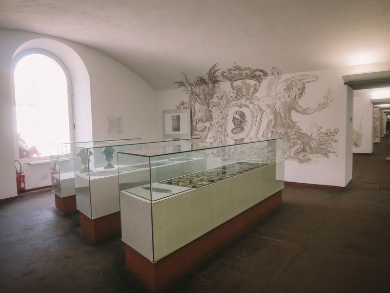 corte musée