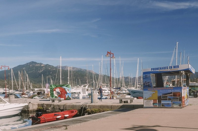sortie bateau port de propriano