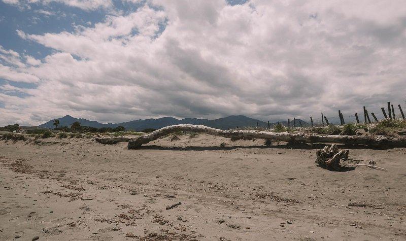 debris plage san pellegrino