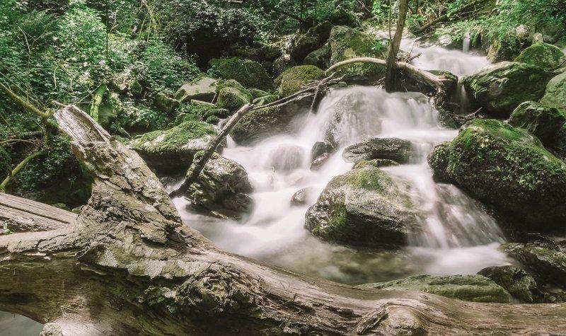 cascade sisco