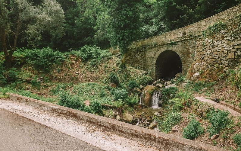 pont sisco