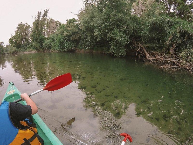 kayak golo lucciana