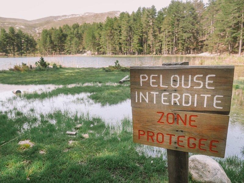 pelouse lac de creno