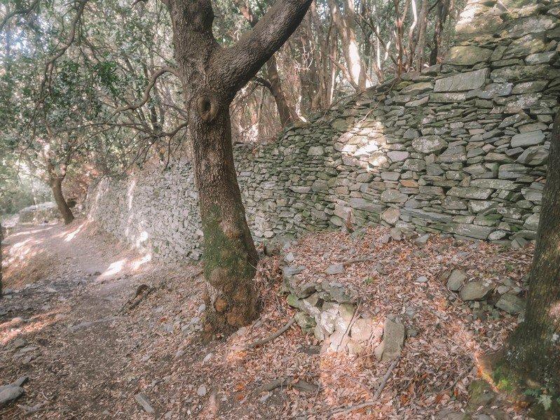 terrasses de nonza