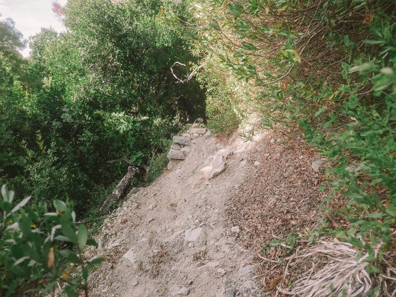 sentier randonnée nonza