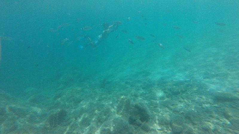 snorkeling plage de canella